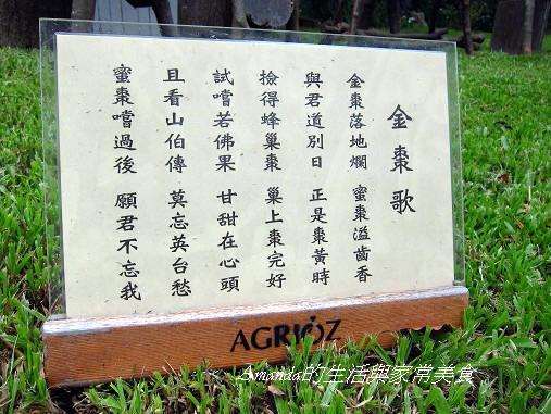 橘之鄉-歌謠