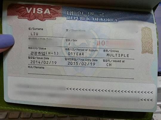 觀光就業簽證