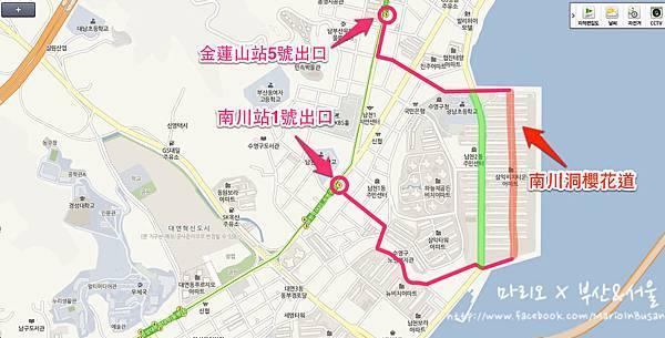 [[釜山//遊樂]] 南川 - 2013年釜山最美的櫻花小路!!南川洞櫻花道~