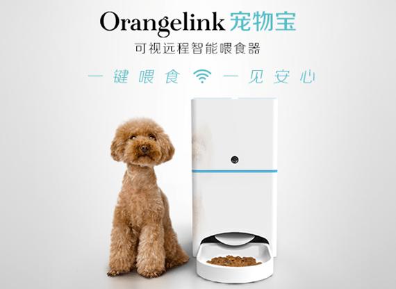 寵物獨自在家不吃胖?你的救星 Orangelink 來了! orangelink._home