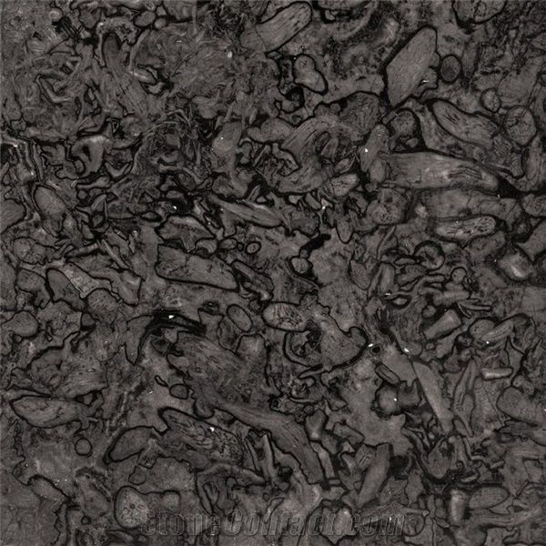 fossil grey marble grey marble