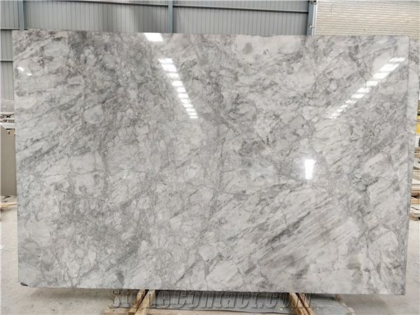 super white calacatta quartzite slab