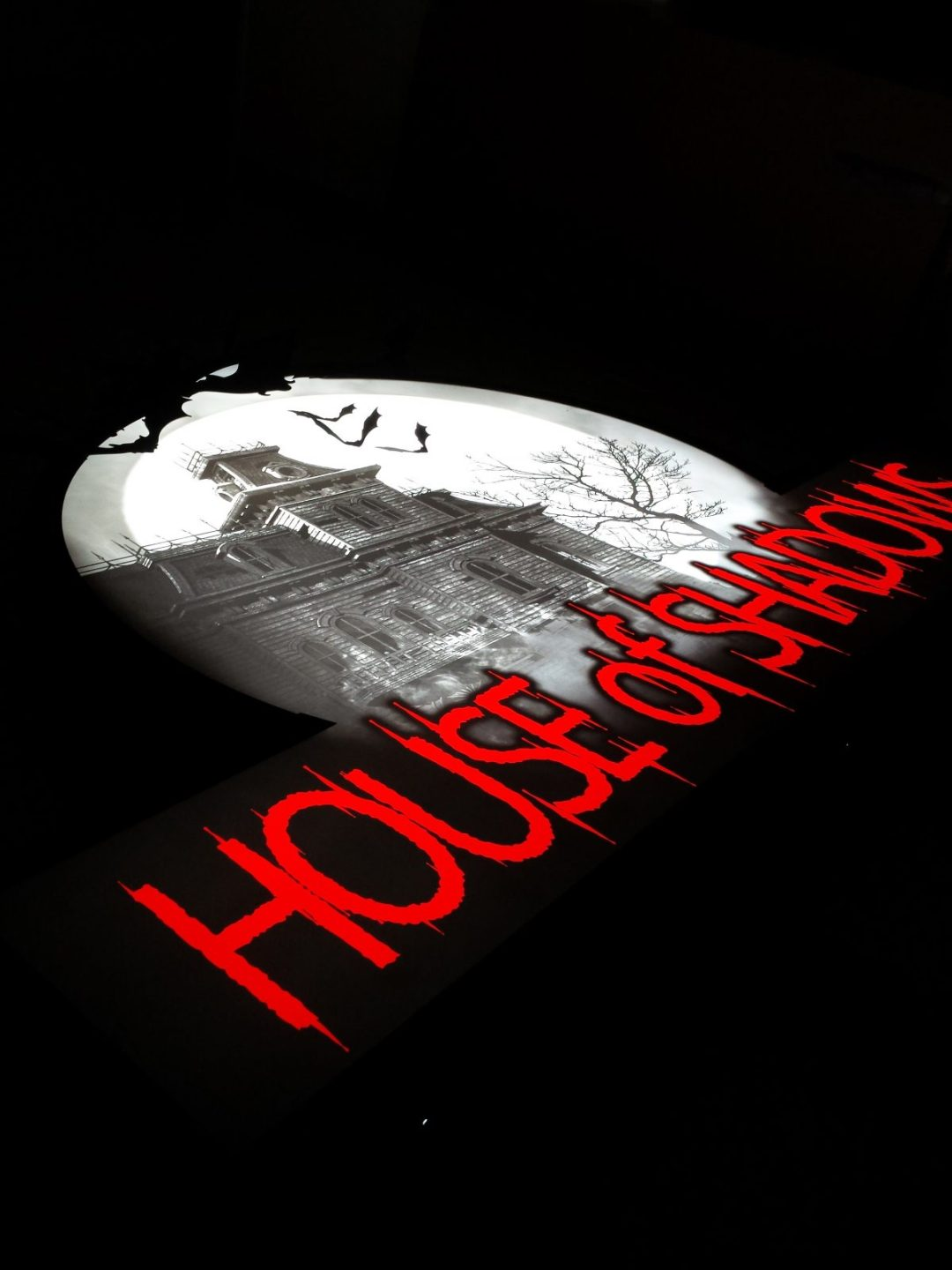House of Shadows Sign Detail