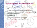 brand-extensions-meaning-advantages-and-disadvantages