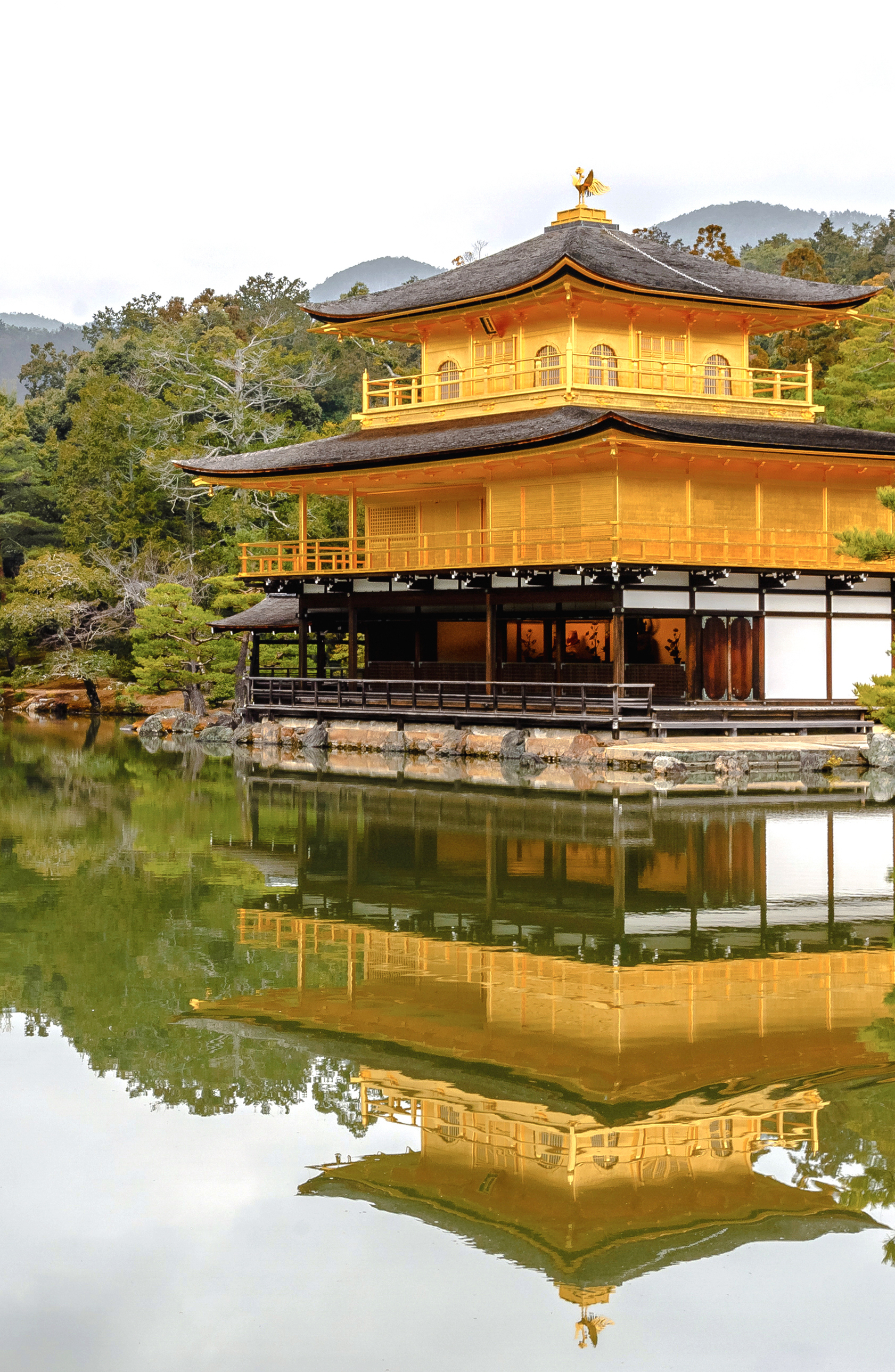 The Golden Pavilion- Kyoto's Most Precious Temple