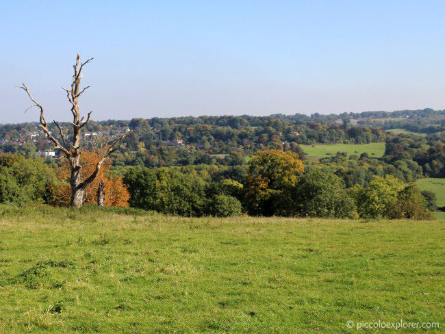 View of Surrey countryside at Bocketts Farm Park Surrey