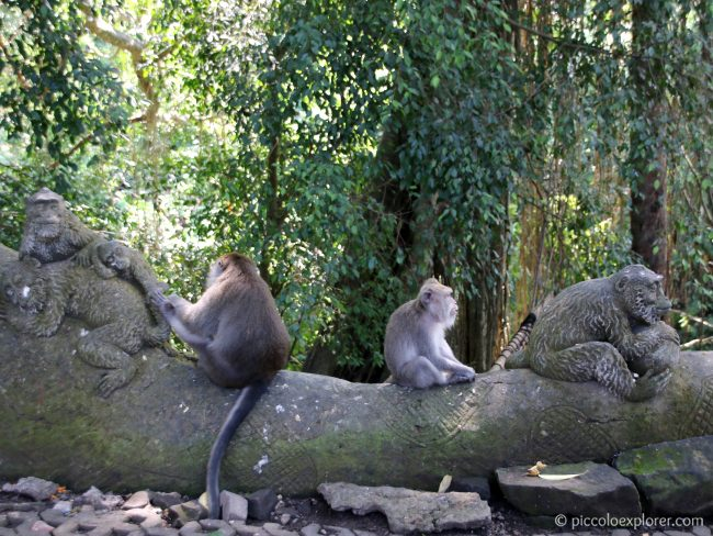 The Sacred Monkey Forest in Ubud