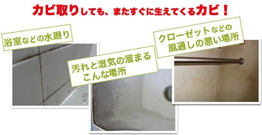 【Azuma】日本原裝進口黑黴剋星 1入起超值優惠方案  GOMAJI夠麻吉