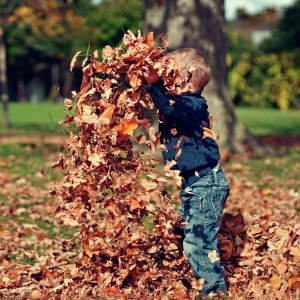 30 Ways to Make This Autumn Unforgettable [Free Printable]