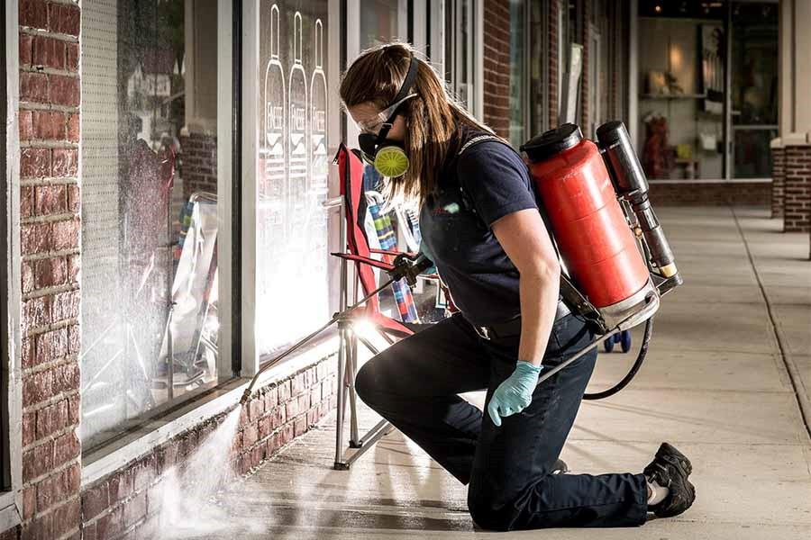 United Kingdom Fumigation - Pest Control Central London