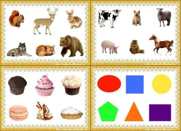 Классификация предметов для дошкольников картинки