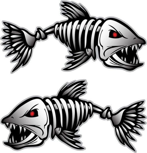 Скелет рыбы рисунок простым карандашом для детей.