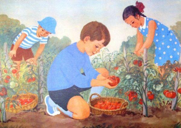 Труд людей осенью картинки для детей в школу и детский садик.