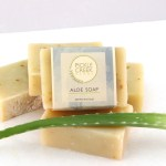 Portraits of Aloe Soap