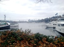 Seattle Lake Union
