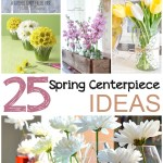 25 Spring Centerpiece Ideas