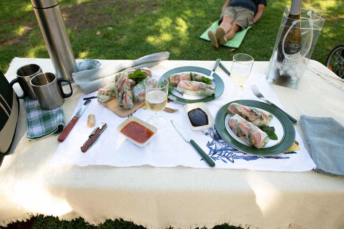 Picnic table in the park with Asian style picnic of duck rice paper rolls.