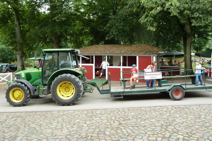 picotee / kirschenpfluecken gut stockseehof 05