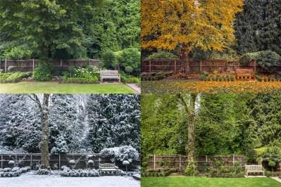 Day 301.2 – 4 Seasons