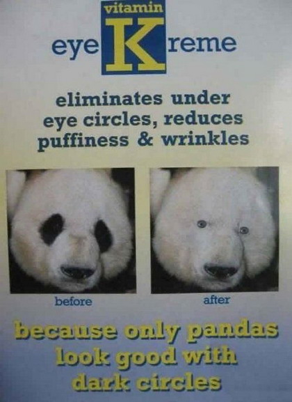 https://i1.wp.com/pics.blameitonthevoices.com/112009/only_pandas_look_good_with_dark_circles.jpg?w=640
