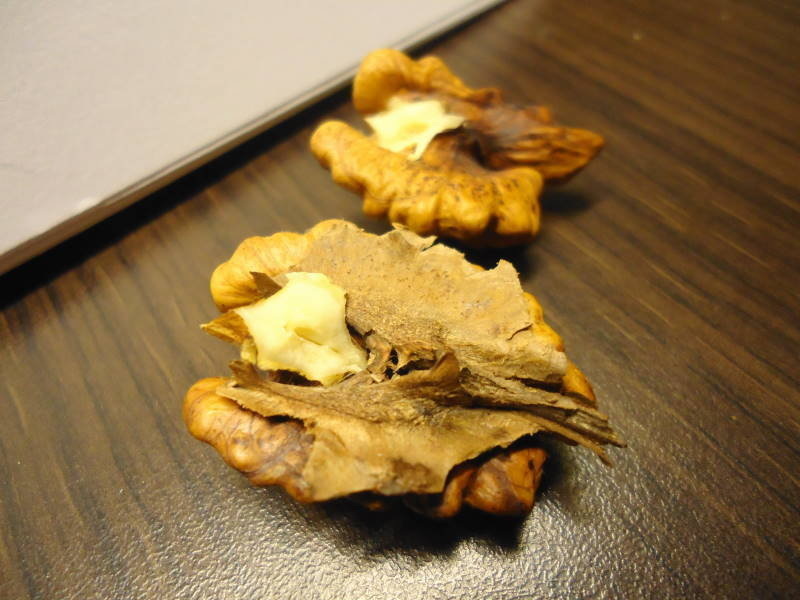 Walnut kernel split in halves with the hard partition on one half
