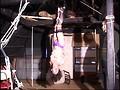 86axdvd00248r [AXDVD-248] 人妻蜜室監禁 未亡人、若妻に異物挿入、蝋燭鞭責め、天井吊り @の動画キャプチャサンプル 4 / 20