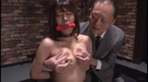 家畜娼婦に転落した女秘密Clubマトロナ志木あかね のサンプル画像 7枚目