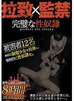 完璧な性奴隷BEST vol.02 少女拉致、監禁、調教録。