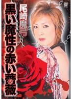 尾崎魔弓 黒い魔性の赤い薔薇
