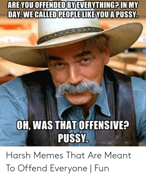 Image result for people are offended by everything memes