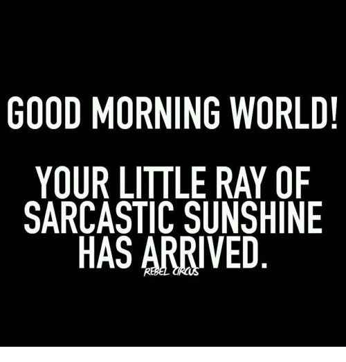 GOOD MORNING WORLD! YOUR LITTLE RAY OF SARCASTIC SUNSHINE ...