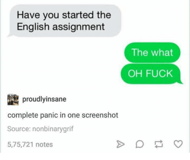 Fucking Funny And Fuck Have You Started The English Assignment The What Oh