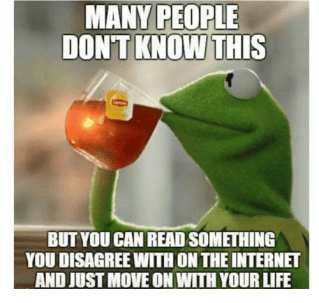 Image result for kermit meme disagreeing on the internet