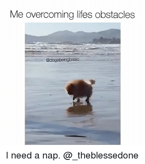 Meme Overcoming Obstacles