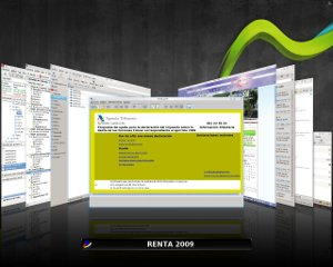 Programa de ayuda para la declaración de la renta 2009 para Linux