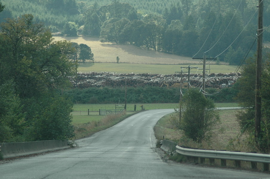Willamina OR Our Logging Townproducing Photo