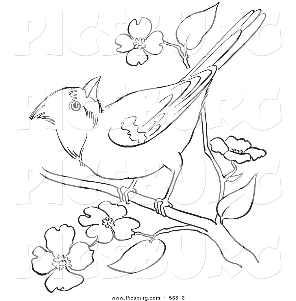 Clip Art Of A Cardinal Bird On A Blossoming Tree Branch