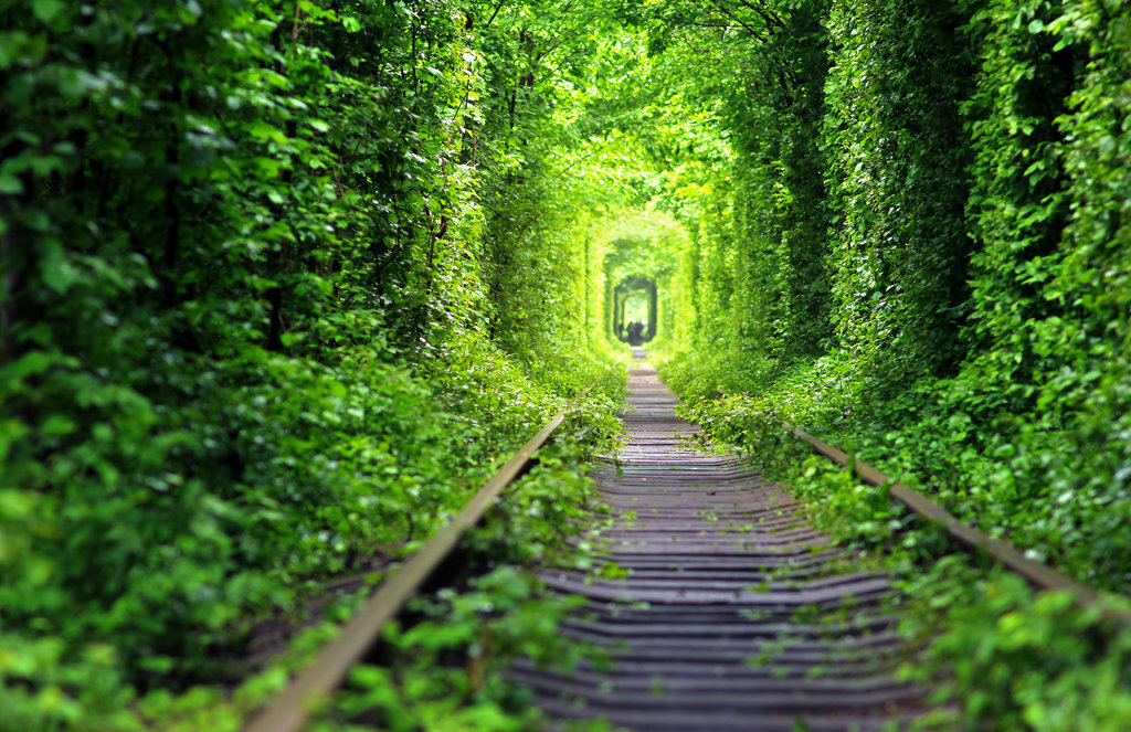 beautiful-photos-of-tunnel-of-love-in-kleven-ukraine-picture-collections
