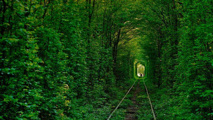 beautiful-photos-of-tunnel-of-love-in-kleven-ukraine