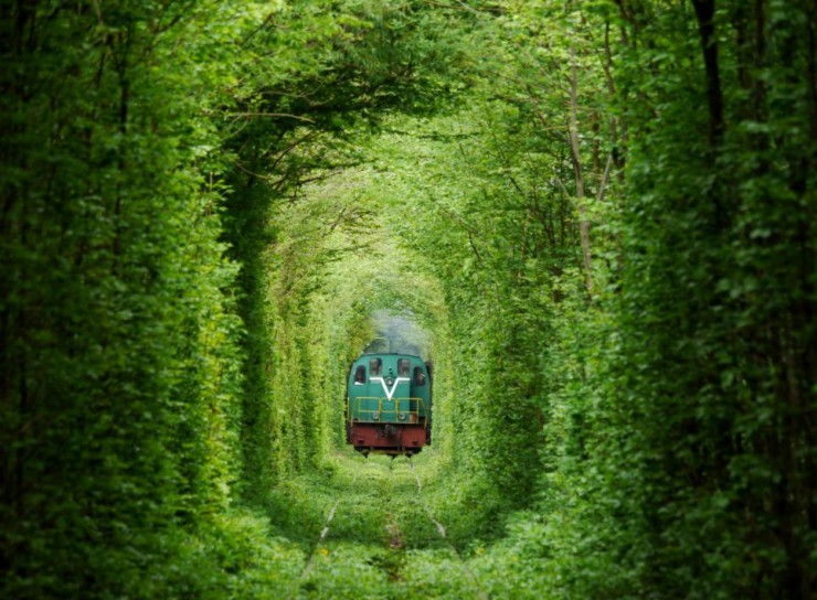train-coming-beautiful-photos-of-tunnel-of-love-in-kleven-ukraine