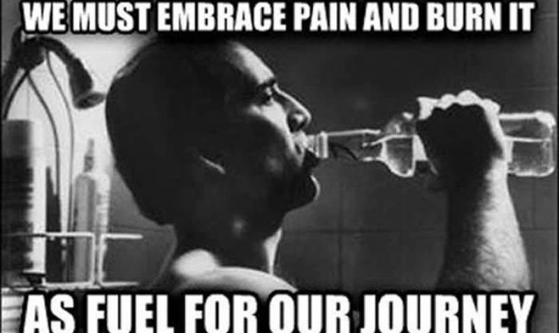 we-must-embrace-pain-and-burn-it-as-fuel-for-our-journey