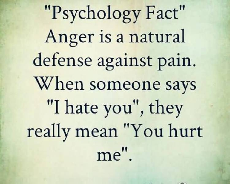 psychology-fact-anger-is-a-natural-defense-against-pain-when-someone-says-i-hate-you-they-really-mean-you-hunt-me