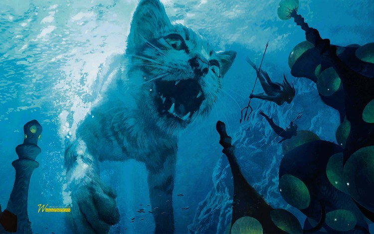 angry-white-tiger-underwater-full-hd-wallpaper