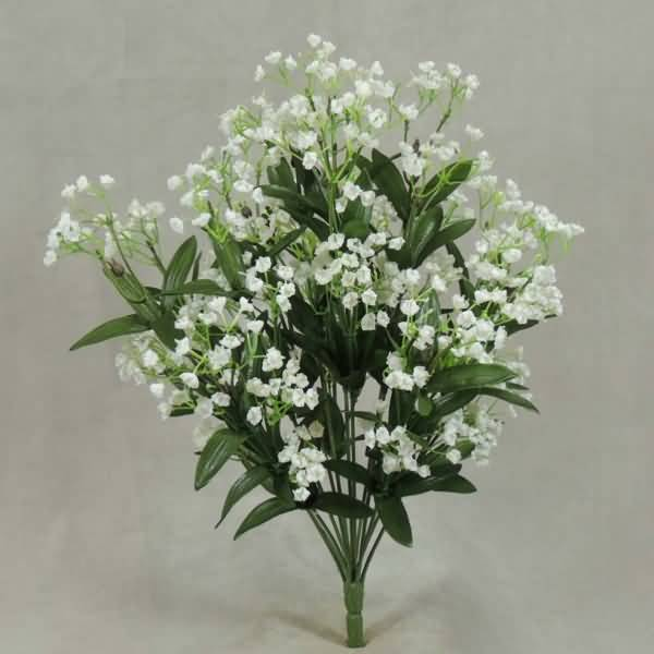 Best White Baby's Breath Flower Plant For Decoration