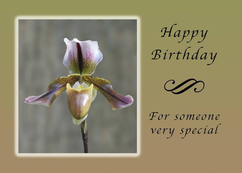 Birthday Wishes Image Greeting For Someone Special