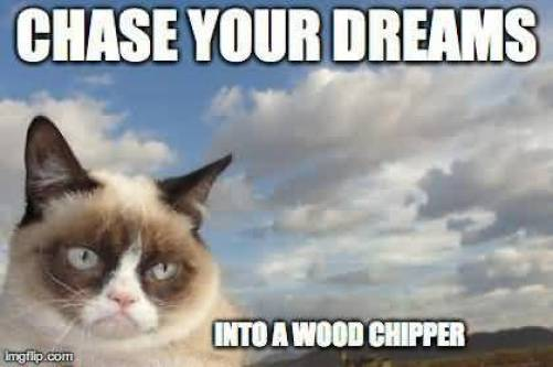 Chase Your Dreams Into A Wood Chipper Grumpy Cat Memes Image