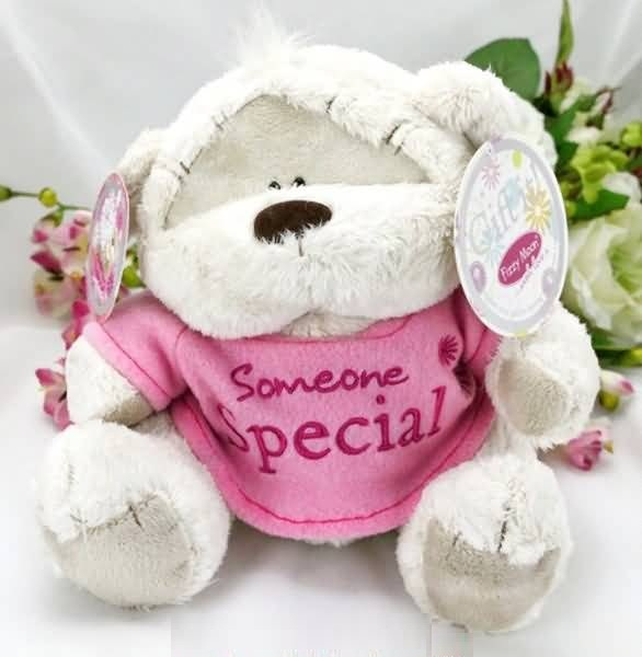 Cute Teddy Birthday Wishes For Someone Special