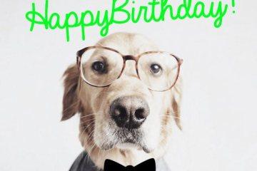 32 Wonderful Boss Birthday Wishes Sayings Picture Amp Photo Picsmine