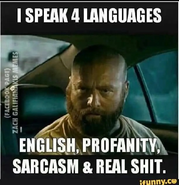 Funny Gangster Meme I speak 4 languages English profanity sarcasm & real shit Picture