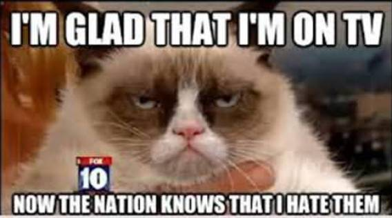 Grumpy Cat Memes Im Glad That Im On Tv Now The Nation Knows That I Hate Them Snap